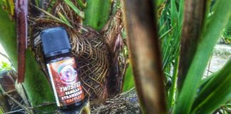 RECENSIONE AROMA SVAPO TWISTED VAPING VANILLA STRAWBERRY WAFFLES ECIG