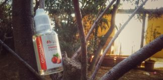 RECENSIONE LIQUIDO SIGARETTA ELETTRONICA APOLLO ECIGS STRAWBERRY