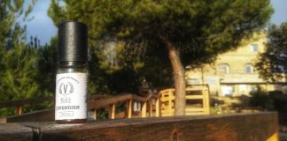 RECENSIONE AROMA SVAPO V BY BLACK NOTE CAVENDISH